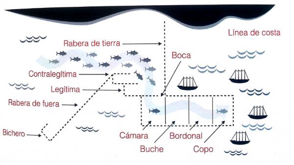 almadraba catching process