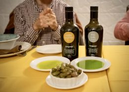 Extra Virgin Olive Oil from Melgarejo