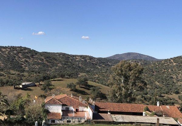 iberico farmland